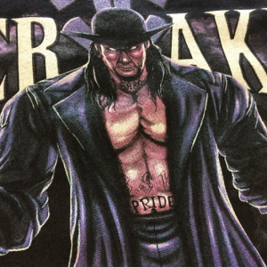 undertaker 300x300 - undertaker